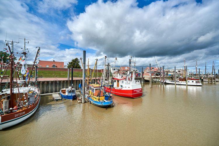 Hafen Ditzum