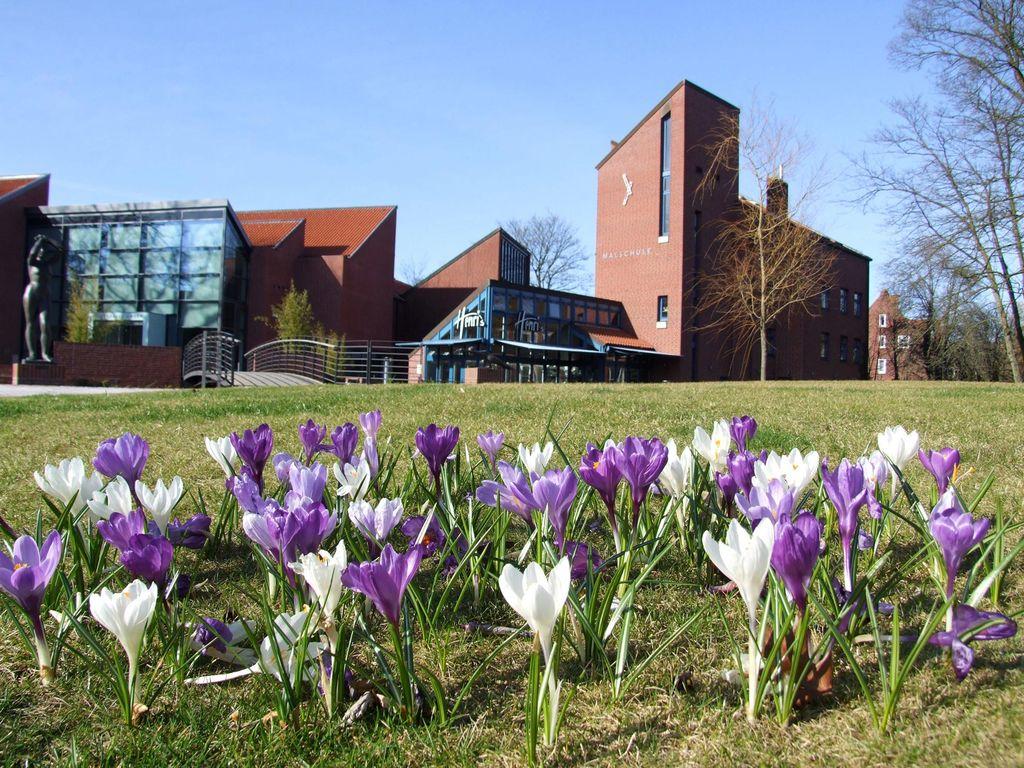 Krokussen vor der Kunsthalle Emden