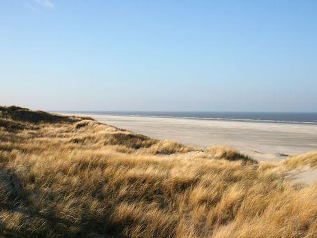 Dünenlandschaft entlang des Strandes von Juist