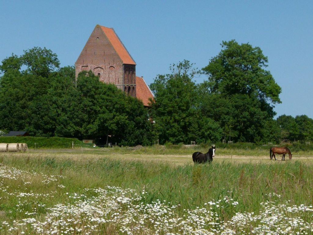 Blick über eine Weide mit Pferden auf den Kirchturm Suurhusen