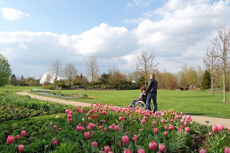 Person im Rollstuhl im Park der Gärten in Bad Zwischenahn