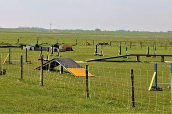 Fun-Agility-Park Neßmersiel