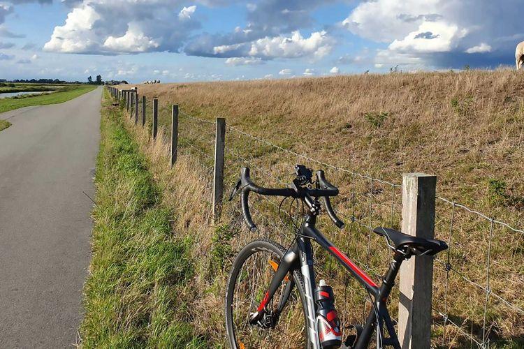 Fahrrad lehnt an einem Zaun am Deich