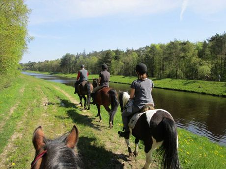 Eine Gruppe Reiter auf einem Wanderritt entlang eines Tiefs bei Holtgast