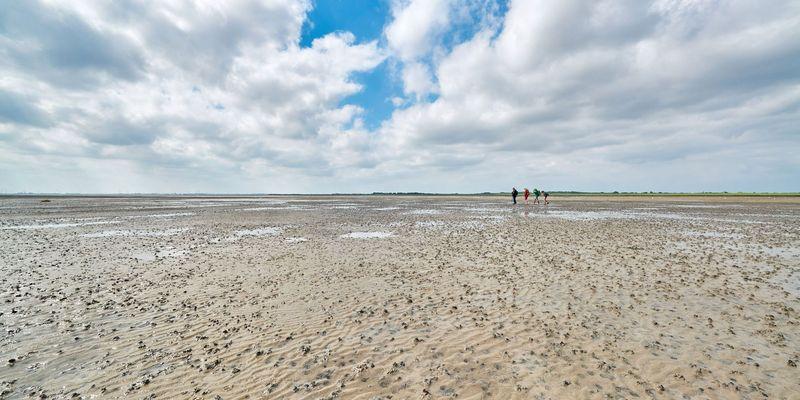 Maritim-historisches Erlebnis am Weltnaturerbe Wattenmeer