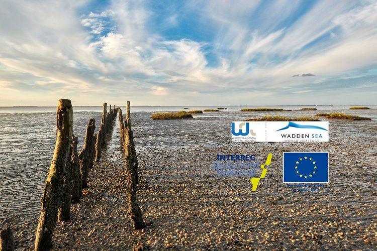 """INTERREG V A-Projekt """"Watten-Agenda 2.0"""""""