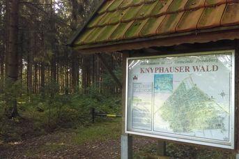 Knyphauser Wald
