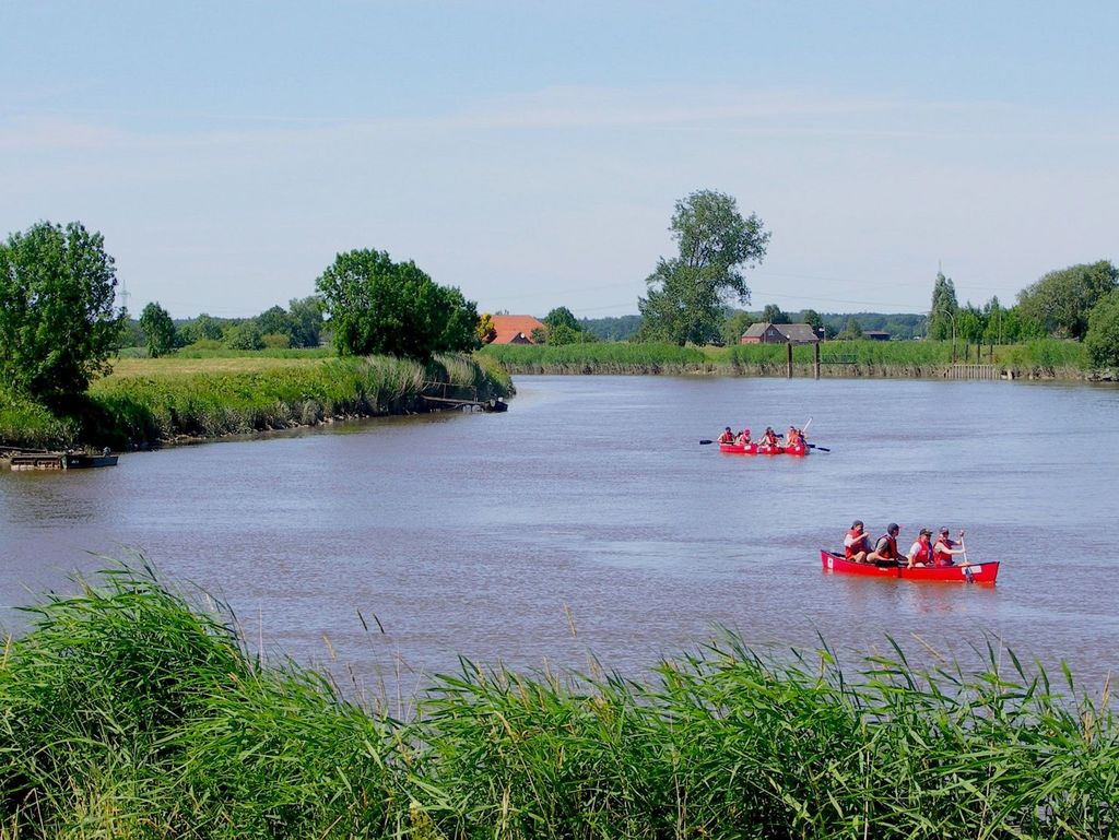 Mehrere rote Boote mit Paddlern von Paddel und Pedal auf dem Wasser