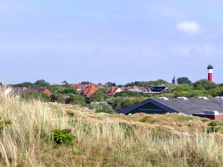 Dünenlandschaft auf Wangerooge mit Leuchtturm im Hintergrund
